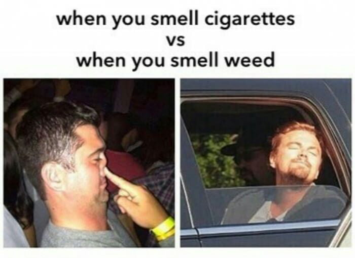Ass smelling pics